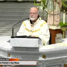 """Cardinal Seán: """"We need to take care of each other"""""""
