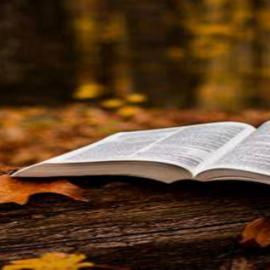 Fall Bible Studies Beginning Soon!